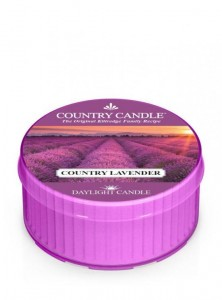 Country Daylight COUNTRY LAVENDER