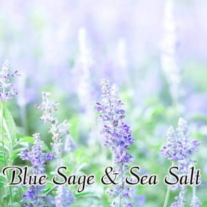 Milkhouse Wosk BLUE SAGE & SEA SALT