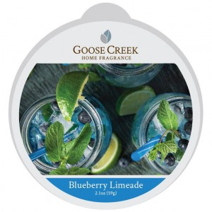 Goose Creek Wosk BLUEBERRY LIMEADE