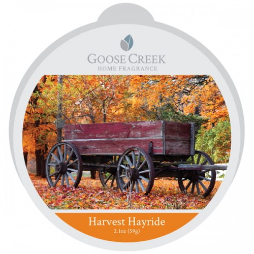Harvest-Hayride-scented-wax-melt.jpg