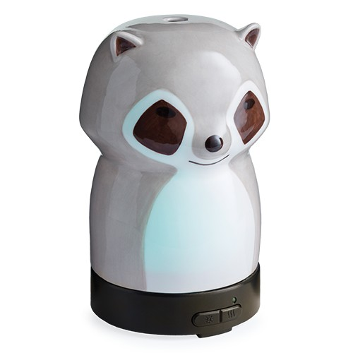 diffuser-racoon.png